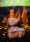 Closeup of a steak Royalty Free Stock Images