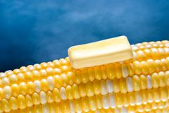 Closeup of a steaming organic corn cob with a piece of melting butter on top. Blue background Royalty Free Stock Photo