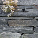 Closeup of stone wall Royalty Free Stock Image