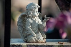 stoned angel on tomb in a cemetery royalty free stock image