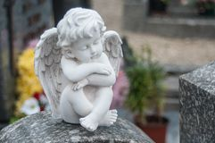 Stoned angel at cemetery Stock Image