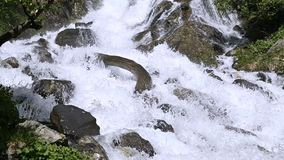 Closeup stones and spray of a stormy mountain river in a green forest in slow motion with tracking wiring. The concept