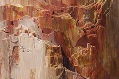 Closeup of stony rings stock photos