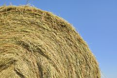 Closeup on straw bale Royalty Free Stock Images