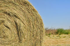 Closeup on straw bale Royalty Free Stock Image