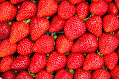 Closeup of strawberries. Royalty Free Stock Photos