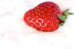 Closeup Of Strawberry In Yogurt royalty free stock photos