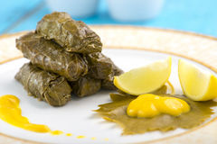 Closeup of Stuffed Grape Leaves Dish Stock Photos