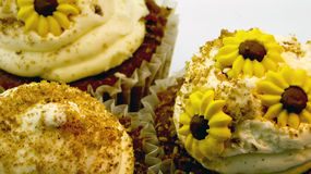 Closeup of sunflower cupcakes Royalty Free Stock Photos