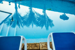 Closeup sunloungers and swimming pool with reflected palms in water Stock Images