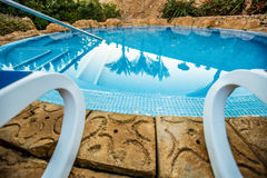 Closeup sunloungers and swimming pool with reflected palms in water Stock Image