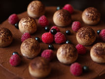 Closeup of a surface of a sweet chocolate cake, adorned with raspberries and black currants on a blurred background. Royalty Free Stock Photos