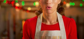 Closeup on surprised housewife in christmas decorated kitc. Closeup on surprised young housewife in christmas decorated kitchen Royalty Free Stock Photography