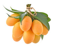 Closeup sweet Marian plum thai fruit isolated on white backgroun. D (Mayongchid Maprang Marian Plum and Plum Mango,Thailand Stock Photo
