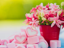 Closeup of sweet marshmallow in the shape of heart. On wooden plate and flower at background. Concept about love and relationship. Soft Style for Background Stock Photos