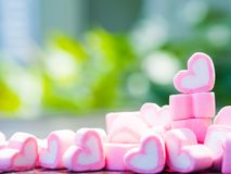Closeup of sweet marshmallow in the shape of heart on wooden plate and flower at background. Concept about love and relationship. Soft Style for Background Royalty Free Stock Photography