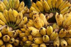 Closeup of tasty ripe bananas Royalty Free Stock Photography
