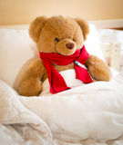Closeup of teddy bear in red scarf lying in bed Stock Photography