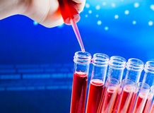 Closeup of test tubes with pipette on red liquid Stock Images