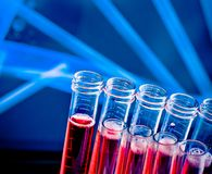 Closeup of test tubes with red liquid in laboratory Royalty Free Stock Images