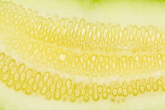 Closeup texture of muskmelon pulp Stock Photo