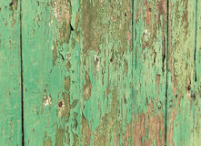 Closeup texture painted green wall. Flake color green texture plank Royalty Free Stock Photo