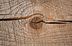Closeup texture of uncolored wooden board Royalty Free Stock Photography