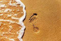 Closeup textured image of a foot print on a yellow sand at a se Royalty Free Stock Images