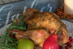 Closeup of Thanksgiving turkey in front of a sign that says Gather. Thanksgiving Day background royalty free stock photography