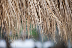 Closeup of thatch roof background. Closeup of an old thatched roof background Royalty Free Stock Image