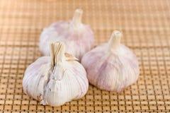 Closeup three cloves garlic Royalty Free Stock Images