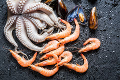 Closeup of three kinds fresh seafood Royalty Free Stock Photo