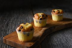 Closeup of three mini chocolate chip muffins on a cutting board. royalty free stock photography