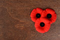 Closeup of three remembrance day poppies. On a wood background royalty free stock images