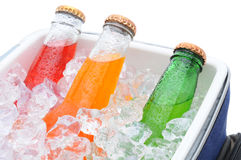 Closeup of three soda bottles in ice chest Royalty Free Stock Photo