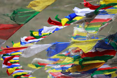 Closeup of Tibetan buddhist prayer flags in Northern India.The t Stock Photos