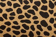 Closeup of tiger texture Royalty Free Stock Photos