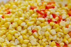 Closeup of tinned whole kernel corn and carrots Stock Photos