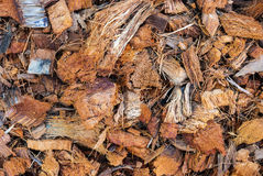 Closeup to Dried Brown Coconut Husk Background Royalty Free Stock Photo
