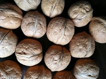 Walnuts. Closeup to lots of Walnut kernels and whole walnuts .Full background Stock Image