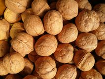 Walnuts. Closeup to lots of Walnut kernels and whole walnuts .Full background Stock Photography