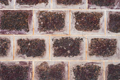 Closeup to Old Rough Brick Wall Background.  Royalty Free Stock Photography