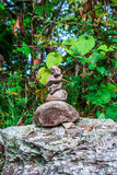 Closeup to Stack of Stone in Forest [Zen Concept] Royalty Free Stock Photos
