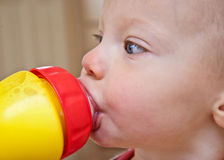 Closeup of Toddler Drinking Milk Royalty Free Stock Photos