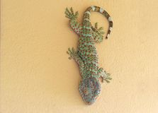 Close up Tokay Gecko is on The Wall. Closeup Tokay Gecko is on The Wall royalty free stock images