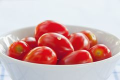 Closeup of tomatoes Stock Images