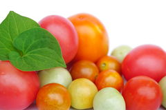 Closeup of tomatoes isolated on a white background Royalty Free Stock Photos