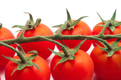 Closeup tomatoes Royalty Free Stock Image