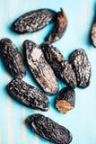 Closeup of tonka beans Royalty Free Stock Photos