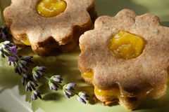 Closeup of traditional linzer cookies with lemon and lavender cream Royalty Free Stock Image